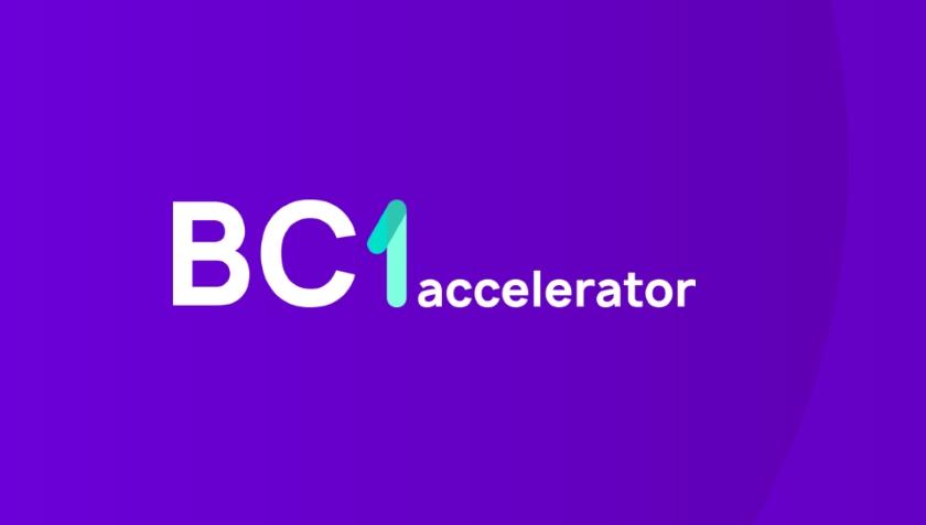 BlockchAIn 1 Accelerator