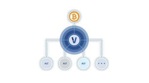 20% objemu denního obchodování Bitcoinu generuje jediný projekt
